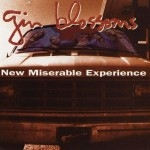 GinBlossoms_NewMiserable
