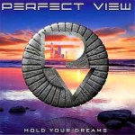 PerfectView_HoldYourDreams