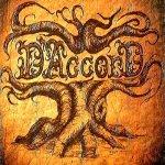 DAccord_1