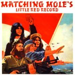 MatchingMole_LittleRed