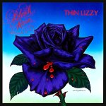 ThinLizzy_BlackRose