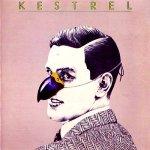 Kestrel_1